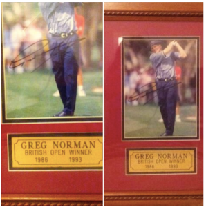 Auction_Greg-Norman 2015-11-24_1403