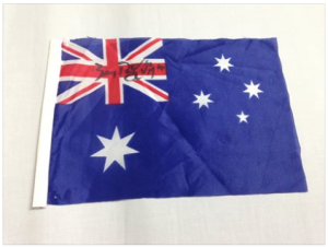 Auction_flag-BenRS 2015-11-24_1408